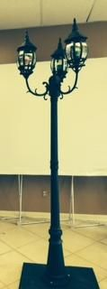 Special Effect - Tall Standing Black Lamp Rental