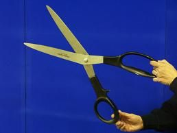 Images of Ceremonial Scissors Rentals, Party & Tent Rentals of Morris County, Northern NJ